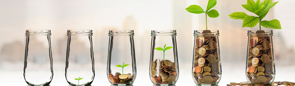 plants in jars with coins